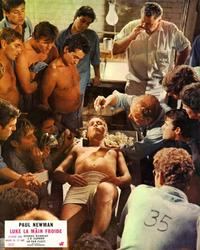 Cool Hand Luke - 8 x 10 Color Photo #7