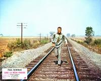 Cool Hand Luke - 8 x 10 Color Photo #8