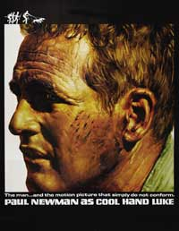 Cool Hand Luke - 43 x 62 Movie Poster - Bus Shelter Style C