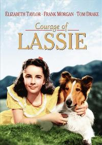 Courage of Lassie - 27 x 40 Movie Poster - Style A