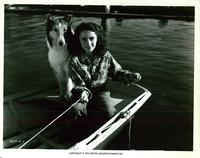 Courage of Lassie (r72) - 8 x 10 B&W Photo #7