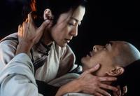 Crouching Tiger, Hidden Dragon - 8 x 10 Color Photo #2