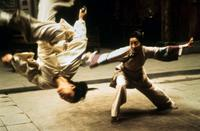 Crouching Tiger, Hidden Dragon - 8 x 10 Color Photo #5