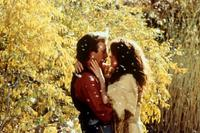 Dances with Wolves - 8 x 10 Color Photo #14