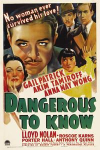 Dangerous to Know - 11 x 17 Movie Poster - Style A