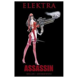 Daredevil - Elektra Assassin Graphic Novel