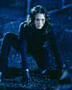 Dark Angel - 8 x 10 Color Photo #23
