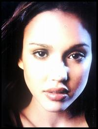 Dark Angel - 8 x 10 Color Photo #7