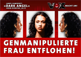 Dark Angel - 27 x 40 Movie Poster - German Style B