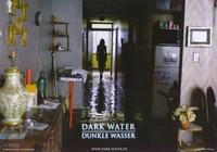 Dark Water - 11 x 14 Poster German Style F