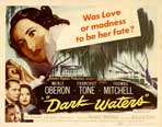 Dark Waters - 22 x 28 Movie Poster - Style A