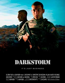 Darkstorm - 43 x 62 Movie Poster - Bus Shelter Style A