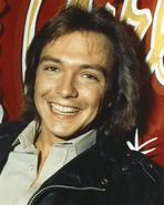 David Cassidy - Gone With The Wind Scarlett O'Hara Side View Posed