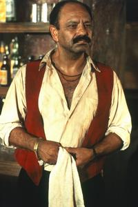 Desperado - 8 x 10 Color Photo #14