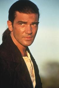 Desperado - 8 x 10 Color Photo #15