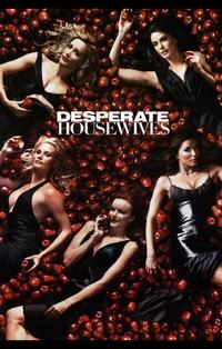 Desperate Housewives - 11 x 17 TV Poster - Style N