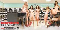 Desperate Housewives - 20 x 40 TV Poster - Style A