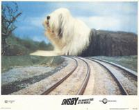 Digby, the Biggest Dog in the World - 11 x 14 Movie Poster - Style B