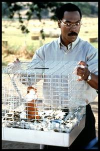 Dr. Dolittle - 8 x 10 Color Photo #2