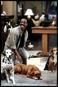 Dr. Dolittle - 8 x 10 Color Photo #3