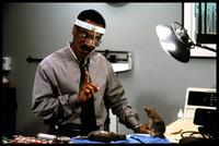 Dr. Dolittle - 8 x 10 Color Photo #8