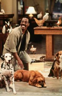 Dr. Dolittle - 8 x 10 Color Photo #52