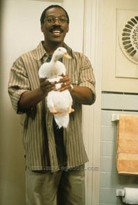 Dr. Dolittle - 8 x 10 Color Photo #16