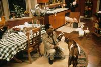 Dr. Dolittle - 8 x 10 Color Photo #18