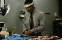Dr. Dolittle - 8 x 10 Color Photo #21