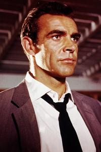 Dr. No - 8 x 10 Color Photo #1