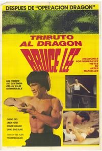 The Dragon Lives - 11 x 17 Movie Poster - Spanish Style A