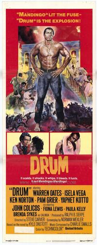 Drum - 14 x 36 Movie Poster - Insert Style A