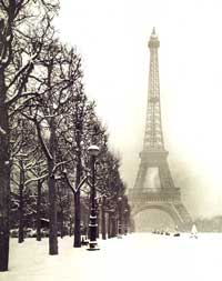 Eiffel Tower Paris - Photography Poster - 16 x 20 - Style A