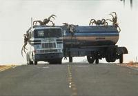 Eight Legged Freaks - 8 x 10 Color Photo #6