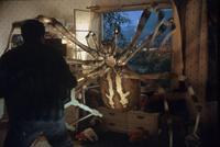 Eight Legged Freaks - 8 x 10 Color Photo #9