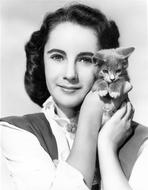 Elizabeth Taylor - Elizabeth Taylor Posed with Cat Classic Portrait