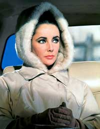 Elizabeth Taylor - 8 x 10 Color Photo #66