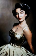 Elizabeth Taylor - Elizabeth Taylor Posed in Silver Dress Portrait