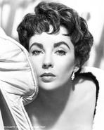 Elizabeth Taylor - Elizabeth Taylor Looking Away in Black and White