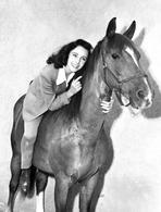 Elizabeth Taylor - Elizabeth Taylor Horse Riding Classic Portrait