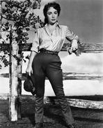 Elizabeth Taylor - Robert Taylor in Classic Portrait