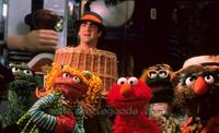 Elmo in Grouchland - 8 x 10 Color Photo #1