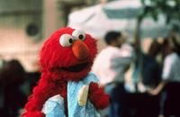 Elmo in Grouchland - 8 x 10 Color Photo #3