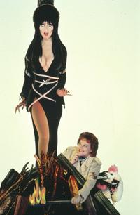 Elvira, Mistress of the Dark - 8 x 10 Color Photo #1