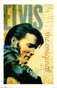 Elvis Presley - Music Poster - 22 x 34 - Style C
