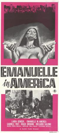Emmanuelle in America - 11 x 17 Movie Poster - Style A
