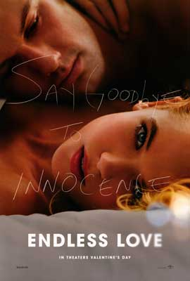 Endless Love - DS 1 Sheet Movie Poster - Style A