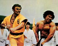 Enter the Dragon - 8 x 10 Color Photo #3