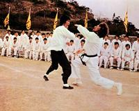 Enter the Dragon - 8 x 10 Color Photo #5