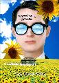 Everything Is Illuminated - 11 x 17 Movie Poster - Style F